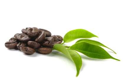 Kona kaffe